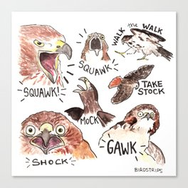 Bird no. 364: GAWK Canvas Print