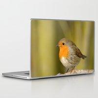 robin Laptop & iPad Skins featuring Robin by Susann Mielke