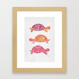 Turtles Framed Art Print