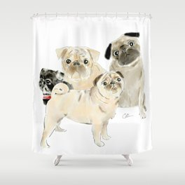 Pug Dogs Pugs Shower Curtain