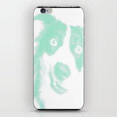 green dog pop iPhone & iPod Skin