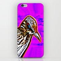 Pop Art Roadrunner No. 1 iPhone & iPod Skin