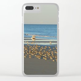 Sandpiper Party at the Beach Clear iPhone Case