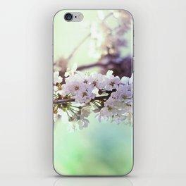 Sakura sakura iPhone Skin