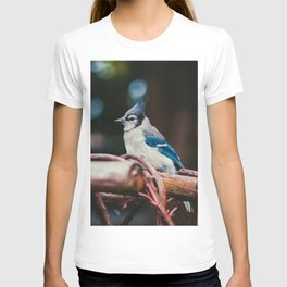 Blue Jay (Color) T-shirt