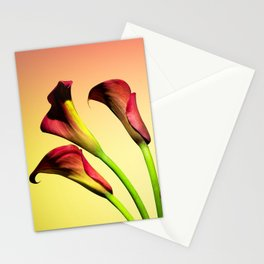 flowers forever Stationery Cards
