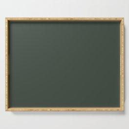 Gray Green Chalk Board Serving Tray