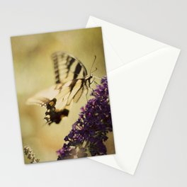 Never-to-be-forgotten Summer Stationery Cards