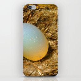 egg + nest iPhone Skin