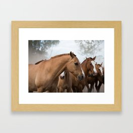 Estancia Horses Framed Art Print