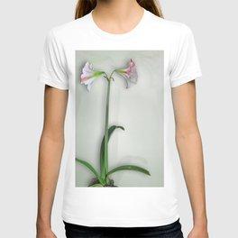 Shadowed Amaryllis T-shirt
