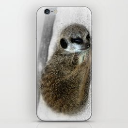 Sleepy Head iPhone Skin