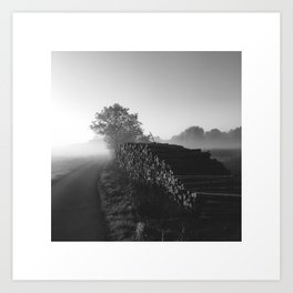 Timber - Black Art Print