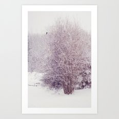 winter's snow Art Print