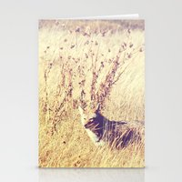 coyote Stationery Cards featuring Coyote  by Shelby Babbert Photography