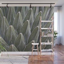 Agave Victoriae-Reginae Cactus Wall Mural