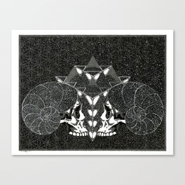 We Are Cosmos Canvas Print