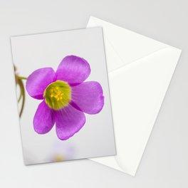 purple oxalis flower Stationery Cards