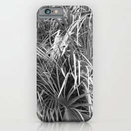 Fan Palm Fronds Greyscale Abstract iPhone Case