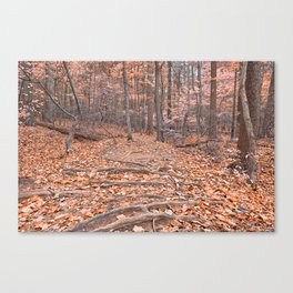 Pastel Fantasy Forest Trail Canvas Print