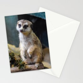 Huh? What'd you Say?? Stationery Cards