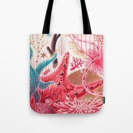 Colorful Starfish Urchin Vintage Sealife Illustration Tote Bag