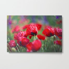 Field of lovee Metal Print