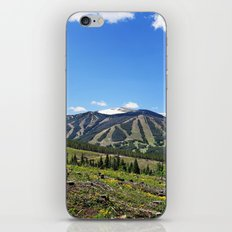 Winter Park iPhone & iPod Skin