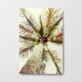 Perfect Palm Tree Metal Print