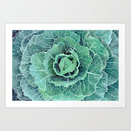 Fall Kale Painting Art Print