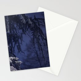 Winter No1 Stationery Cards