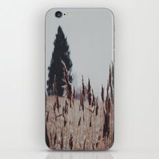 Drift iPhone & iPod Skin