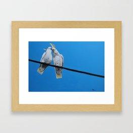 HV Chatter Framed Art Print