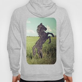 Horse fence Hoody