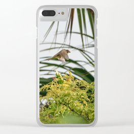 Flying Sparrow Bird female caught in motion flying Clear iPhone Case