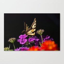 Garden Swallowtail Canvas Print