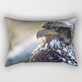 Young Bald Eagle Rectangular Pillow