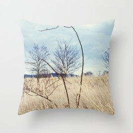 Planet III. Throw Pillow