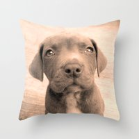 pitbull Throw Pillows featuring Pitbull puppy by ritmo boxer designs