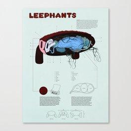 Leephants Canvas Print