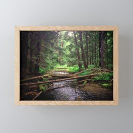Enchanted Forest Framed Mini Art Print