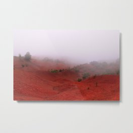 Red Land Metal Print