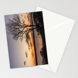 Tree silhouette at sunset Stationery Cards