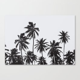 Palm 05 Canvas Print