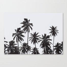 Palm 05 Canvas Print