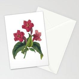 Ruellia Stationery Cards