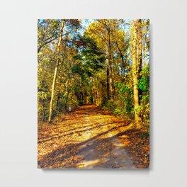 Tow Path Metal Print