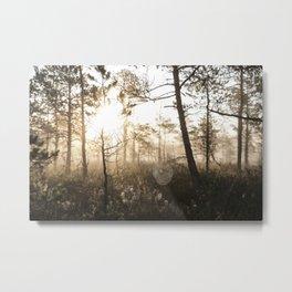 Spiderweb in sunrise Metal Print