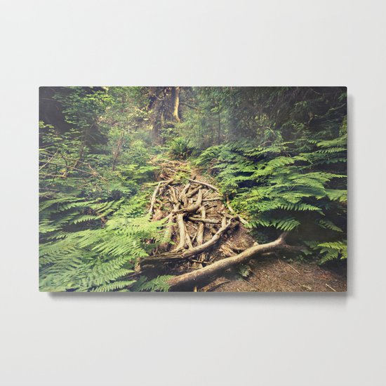 Misty Rainforest Metal Print