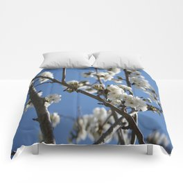Cherry Blossom Branches Against Blue Sky Comforters